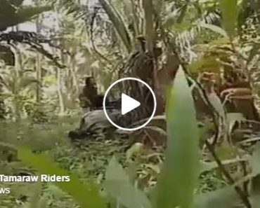 New videos surfaced online shared by the Abu Sayaff bandits